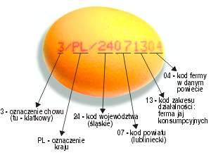 Jajko z kodem określającym jego pochodzenie