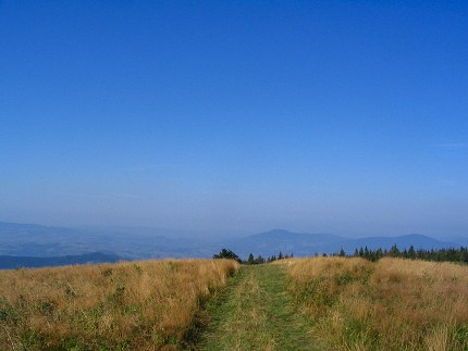 Droga na górze Ćwilin