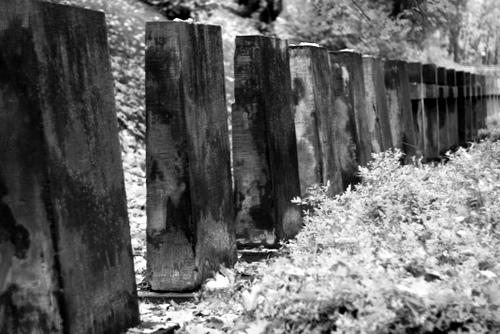 symboliczny cmentarz